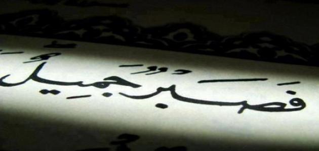 بالصور حكم وامثال عن الصبر , احلي العبارات و الحكم مع الامثال عن الصبر 2439 3