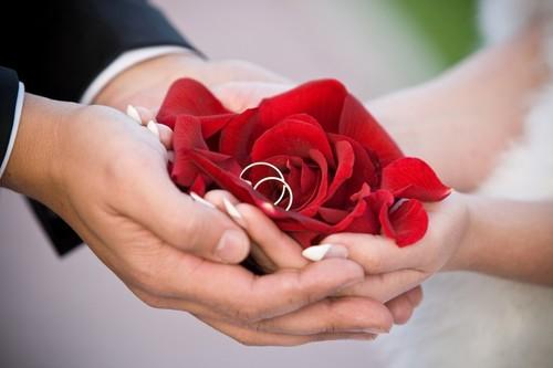 بالصور صور ورد رومانسي , صور للورود والحب الرومانسي 2455 1