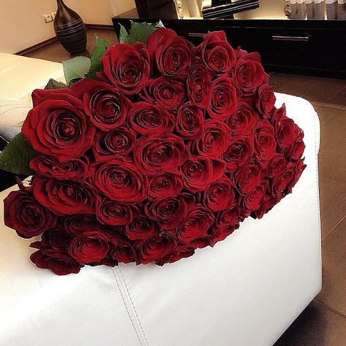 بالصور صور ورد رومانسي , صور للورود والحب الرومانسي 2455 2