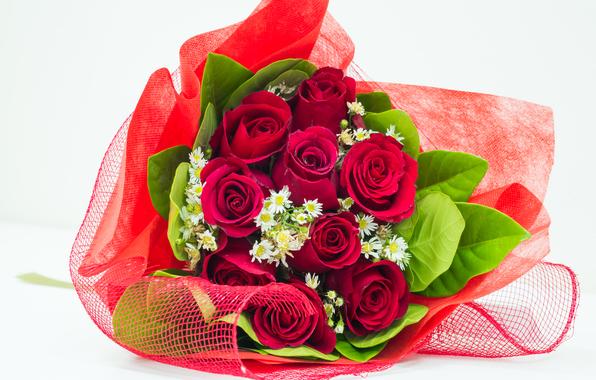 بالصور صور ورد رومانسي , صور للورود والحب الرومانسي 2455 6