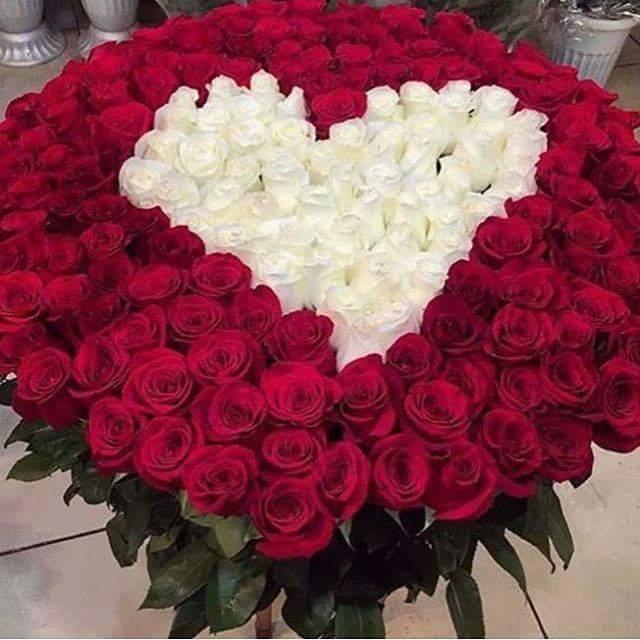 بالصور صور ورد رومانسي , صور للورود والحب الرومانسي 2455 7