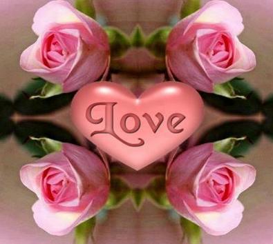 بالصور صور ورد رومانسي , صور للورود والحب الرومانسي 2455
