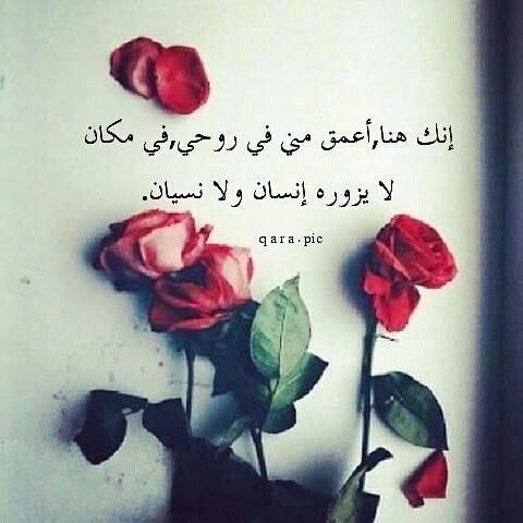 بالصور عبارات حب وعشق , كلمات رومانسيه كلها حب وعشق جامدة اوي 2494 5