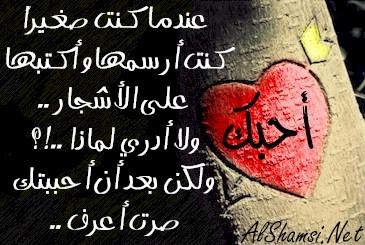 بالصور عبارات حب وعشق , كلمات رومانسيه كلها حب وعشق جامدة اوي 2494 9