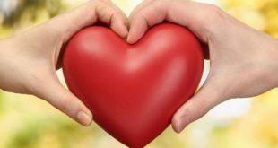 صوره الفرق بين الحب والعشق , الاختلاف الواضح بين الحب والعشق