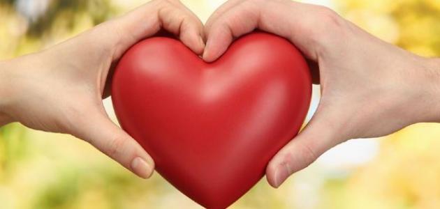 بالصور الفرق بين الحب والعشق , الاختلاف الواضح بين الحب والعشق 2522