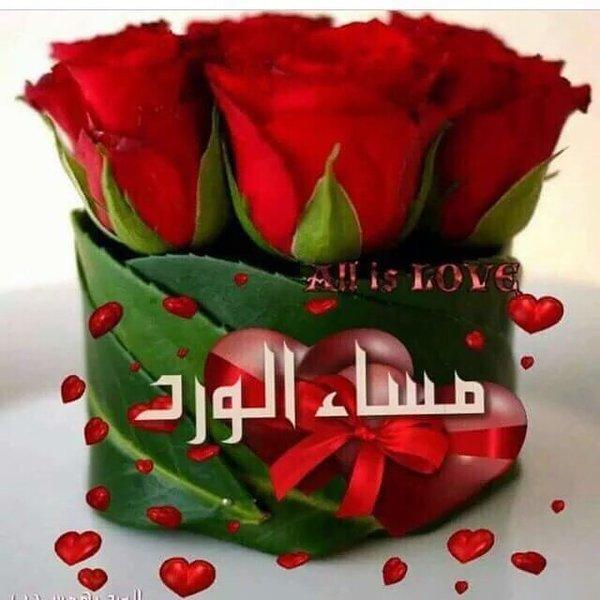 بالصور مساء الورد والياسمين , مسي علي الحبايب بالورد والياسمين 2584 5