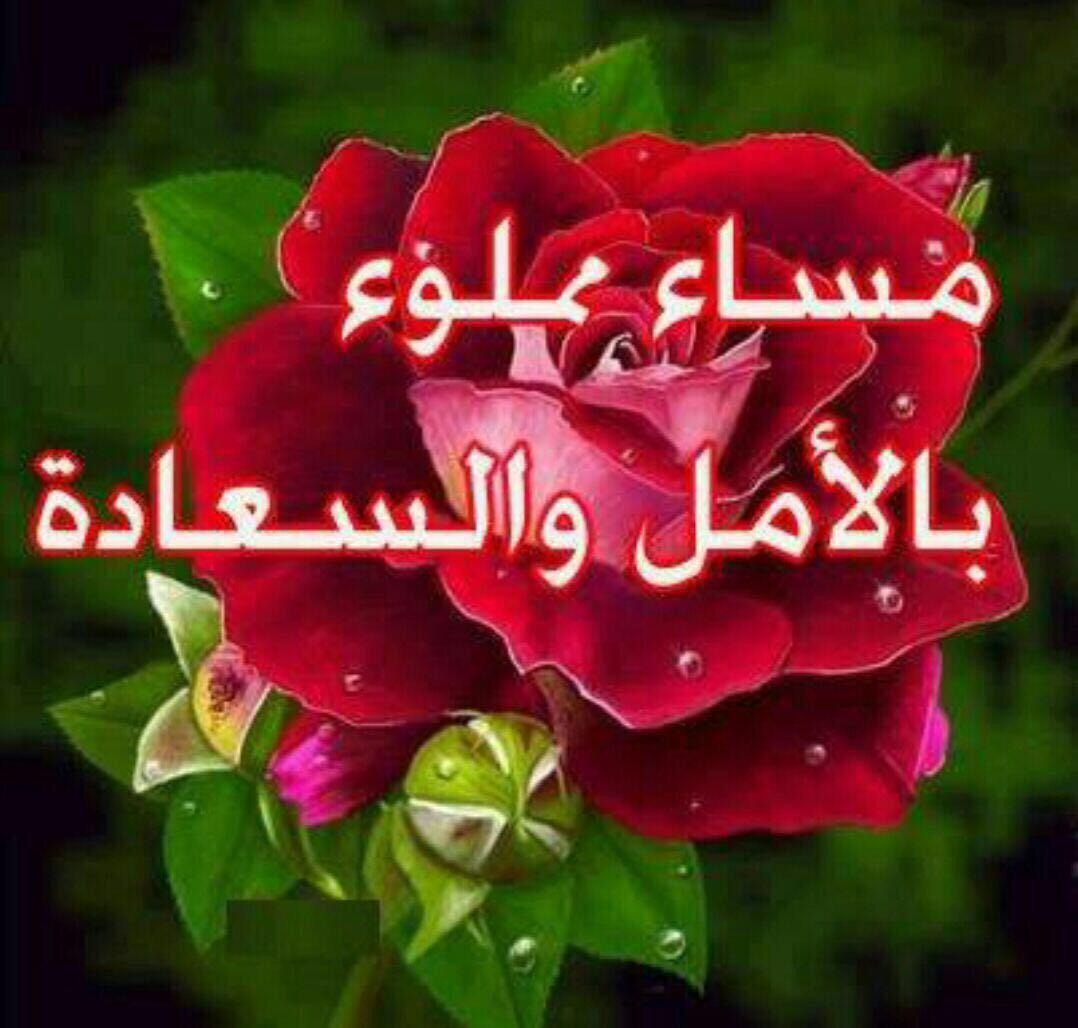 بالصور مساء الورد والياسمين , مسي علي الحبايب بالورد والياسمين 2584