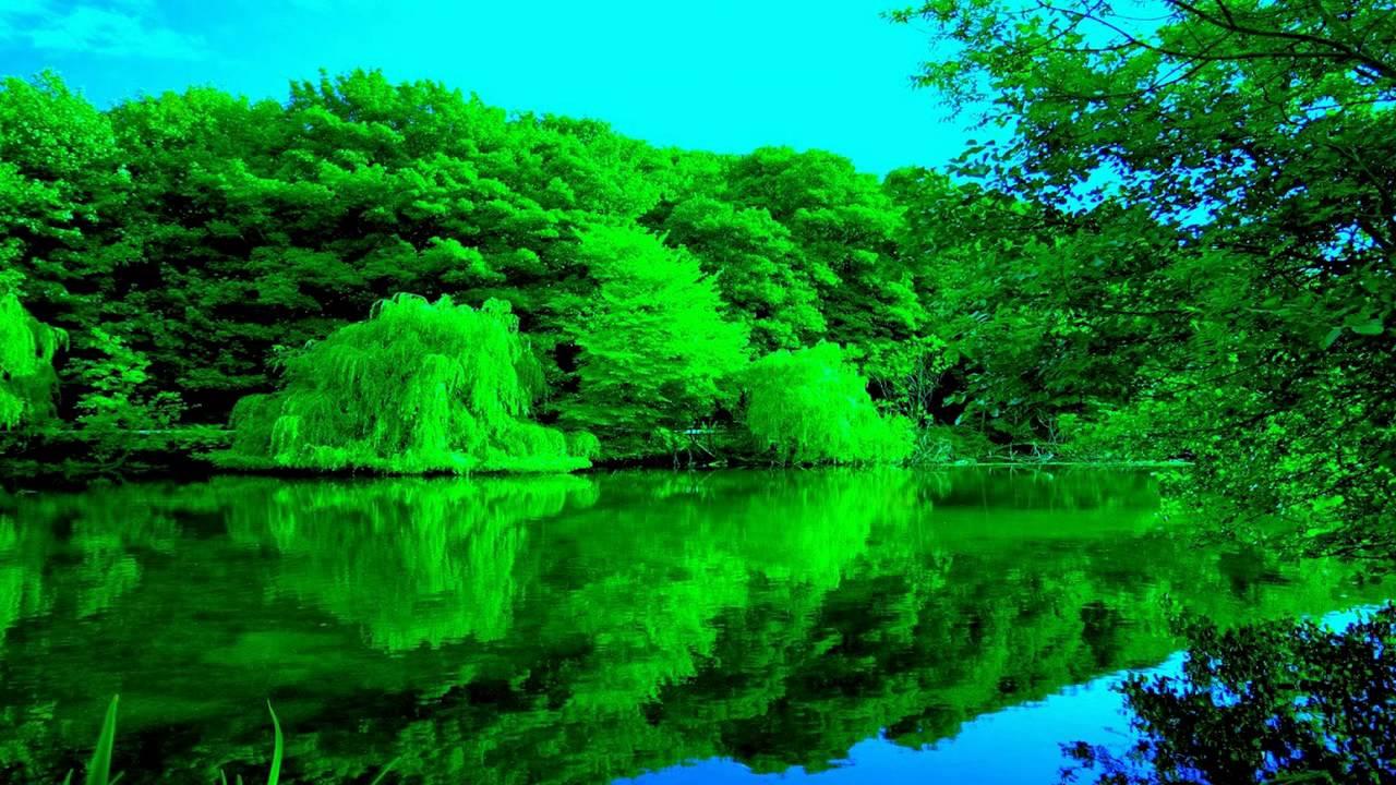 بالصور صور من الطبيعة , صور معبرة الجمال الساحر للطبيعه 2626 2