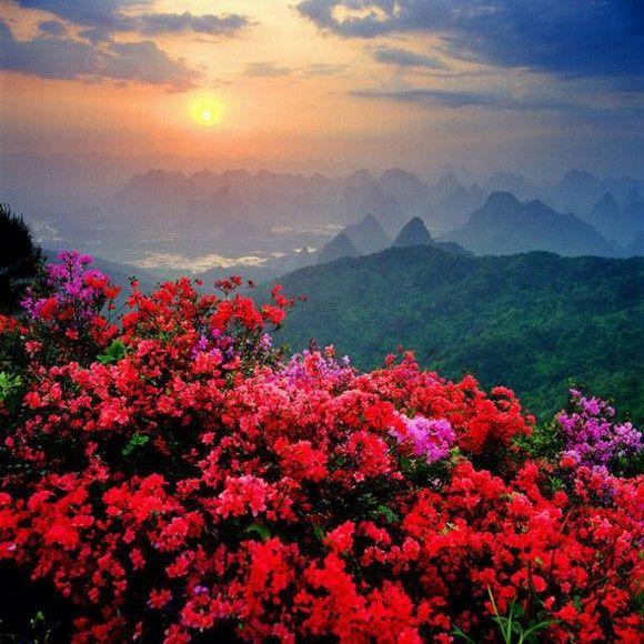 بالصور صور من الطبيعة , صور معبرة الجمال الساحر للطبيعه 2626 5