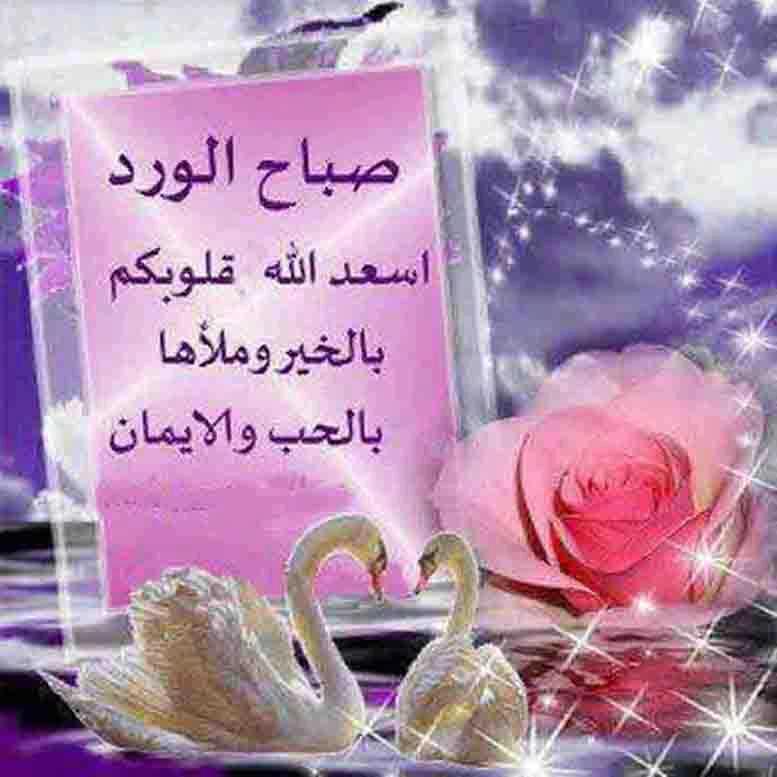 بالصور كلام عن صباح الخير , كلمات صباحيه رومانسيه جميله 2628 6