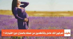 بالصور كيف اعرف اني حامل في البيت , اسهل الطرق التي تعرفك انتي حامل 2740 2 310x165