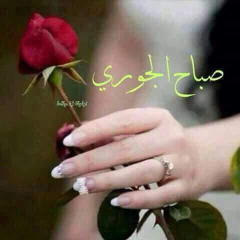 بالصور صور صباح الخير , تحيات صباح كلها رقة 3326 14