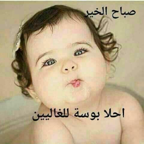 بالصور صور صباح الخير , تحيات صباح كلها رقة 3326 18