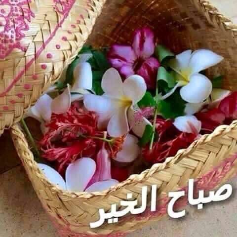 بالصور صور صباح الخير , تحيات صباح كلها رقة 3326 20
