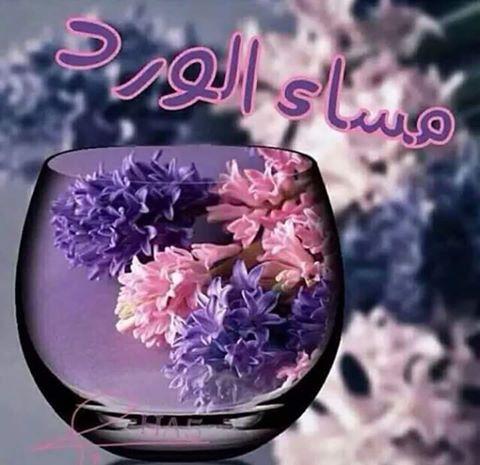 بالصور مساء العسل , تحية مساء عطره 3397 5