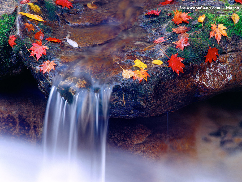 بالصور صور مناظر جميله , اجمل ما فى الطبيعه بالصور 3461 15