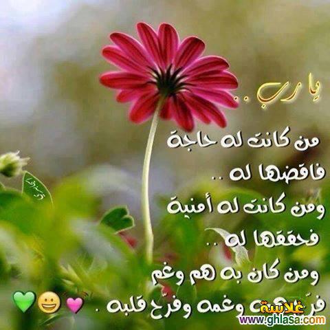 بالصور مسجات تصبحون على خير اسلامية , بالصور مساء الخير اسلاميه 3882 6