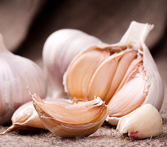 صوره فوائد الثوم , اكل الثوم يوميا مفيد لجسم الانسان