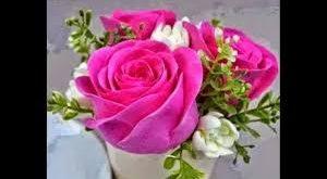 صوره اجمل صور الورد , اجمل الزهور الخلابه