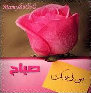 بالصور مسجات صباح الخير رومانسية , صور الصباح للحب unnamed file 339