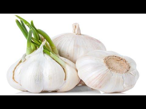 صوره فوائد اكل الثوم , تعرف على فائدة الثوم في الوقاية من الامراض
