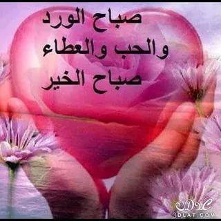 بالصور كلمات صباحية للاصدقاء , رسائل للصباح تهديها لاصدقائك 1102 9