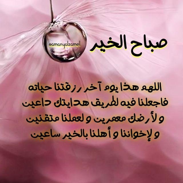 بالصور منشورات صباحية , اجمل البوستات والرسائل الصباحية لاصدقائك 1111