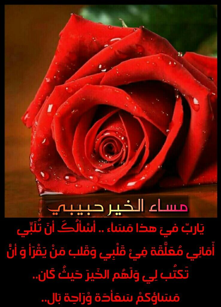 بالصور مساء الخير حبيبي , تعبيرات وكلمات جميلة لتحية المساء لاحبائك 1153 2