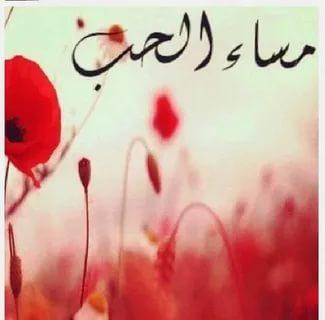 بالصور مساء الخير حبيبي , تعبيرات وكلمات جميلة لتحية المساء لاحبائك 1153 7