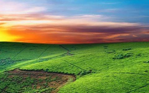 بالصور مناظر طبيعية خلابة , اروع منظر طبيعى سوف ياخذ عقلك 1180 9