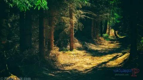 بالصور صور مناظر خلابة , منظر طبيعي جميل 1236 6