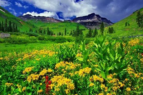 بالصور صور طبيعية , اجمل صورة لمنظر طبيعي خلاب 1249 3