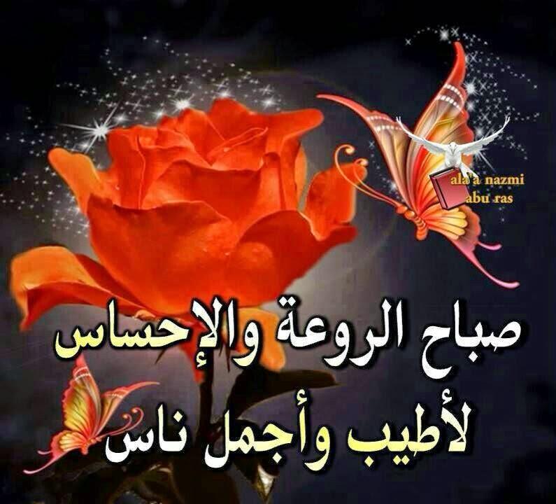 بالصور شعر صباح الخير , اجمل ما قيل من اشعار عن صباح الخير 1338 1