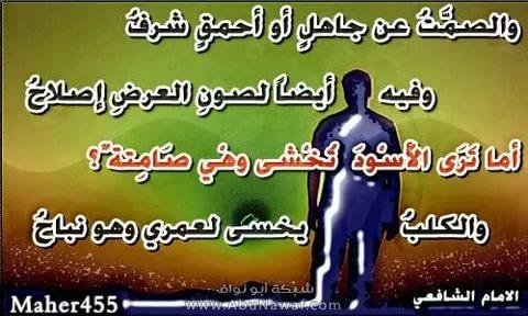 بالصور ابيات شعر قصيره حكم , اجمل بيت شعر وحكم ومواعظ 1339 2
