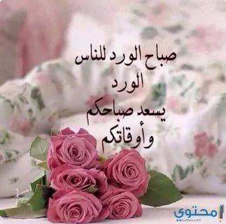 بالصور صباح الخير للحبيب , اجمل تحية الصباح للاشخاص الذين نحبهم 1344 2