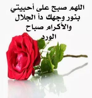بالصور صباح الخير للحبيب , اجمل تحية الصباح للاشخاص الذين نحبهم 1344 3