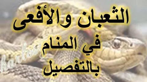 صوره تفسير رؤية الثعبان في المنام , فيديو يفسر قدوم الثعابين فى الحلم