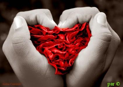 بالصور اروع صور الحب , صورة ورمزية جميلة تعبر عن الحب 1444 6
