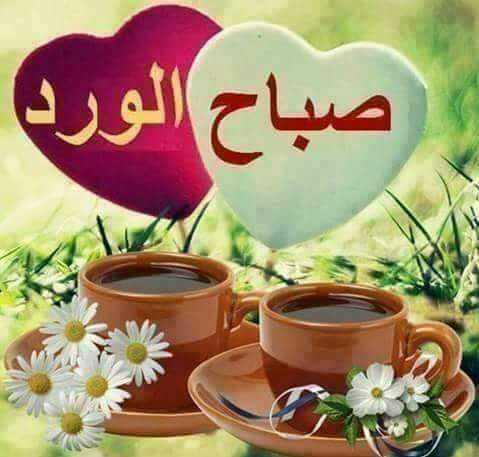 بالصور احلى صباح , اجمل عبارات الصباح تهديها لاصحابك 1446 2