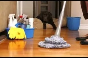 صوره تنظيف البيوت , طرق بسيطة وسهلة لترتيب المنزل