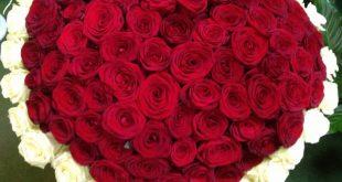 صوره صور ورود روعه , احلى بوكيهات الورد تهديها لاحبائك