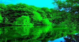 صور الطبيعة الجميلة , اروع الصور المناظر الطبيعيه الجميله