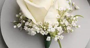 صوره باقات ورود , اجمل مجموعات الورد البيضاء