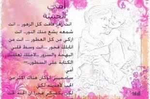 صوره شعر عن الام الحنونة , اجمل العبارات المبكية فى حب الام الحنون