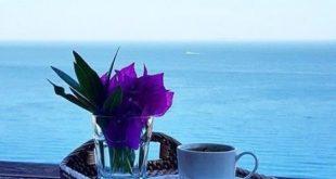 بالصور فيديو صباح الخير , مقطع رائع لصباح الخير والسعادة 504 2 310x165