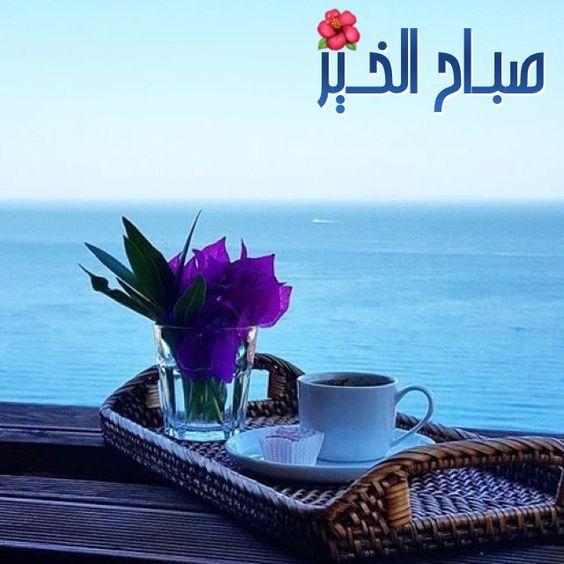 صوره فيديو صباح الخير , مقطع رائع لصباح الخير والسعادة