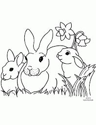 بالصور صور رسومات اطفال , اجمل رسومات الاطفال للتلوين 780 4