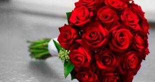 صوره اجمل بوكيه ورد فى الدنيا , اروع صور لبوكية الورد الاحمر