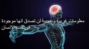 بالصور هل تعلم عن الانسان , حقائق ومعلومات عن جسم الانسان 861 1